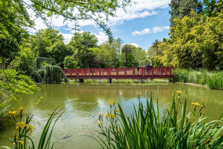 Jardin des plantes de saint cyprien office de tourisme for Au jardin des plantes chambery
