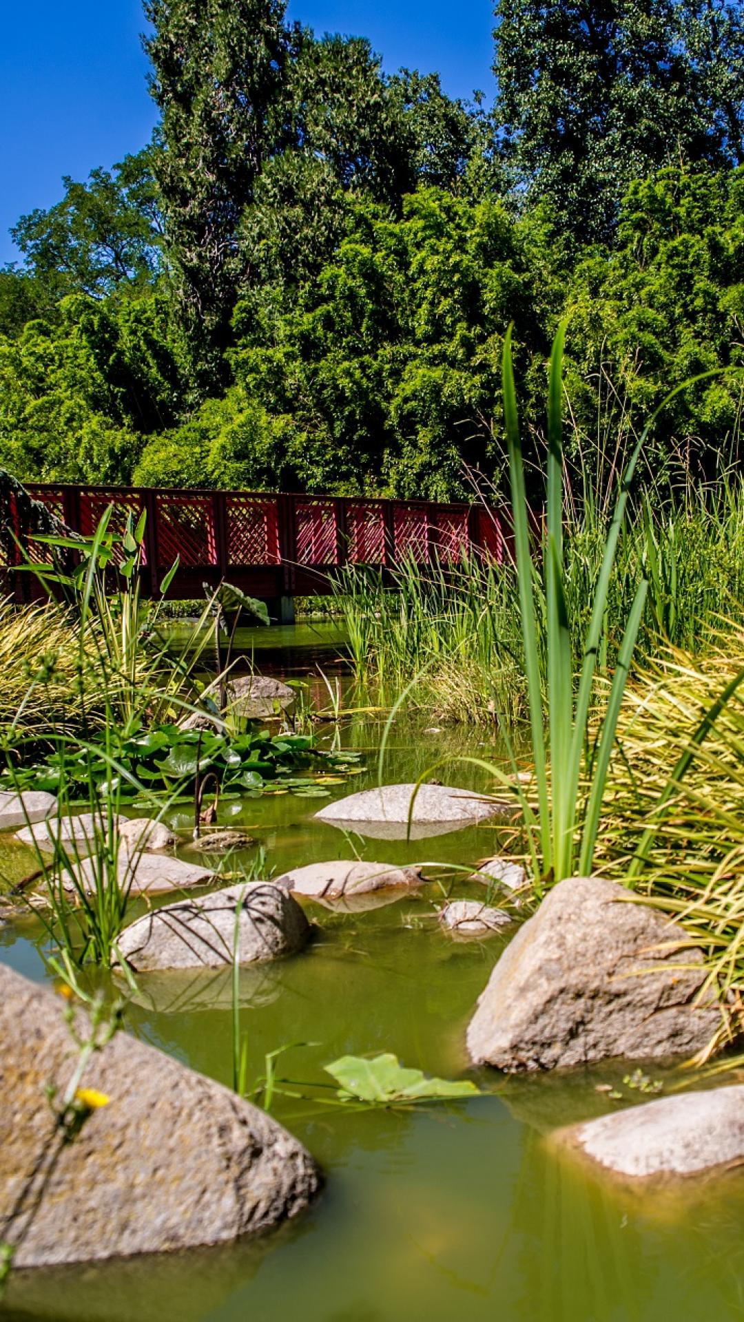Jardin des Plantes de Saint-Cyprien - Office de Tourisme de Saint-Cyprien