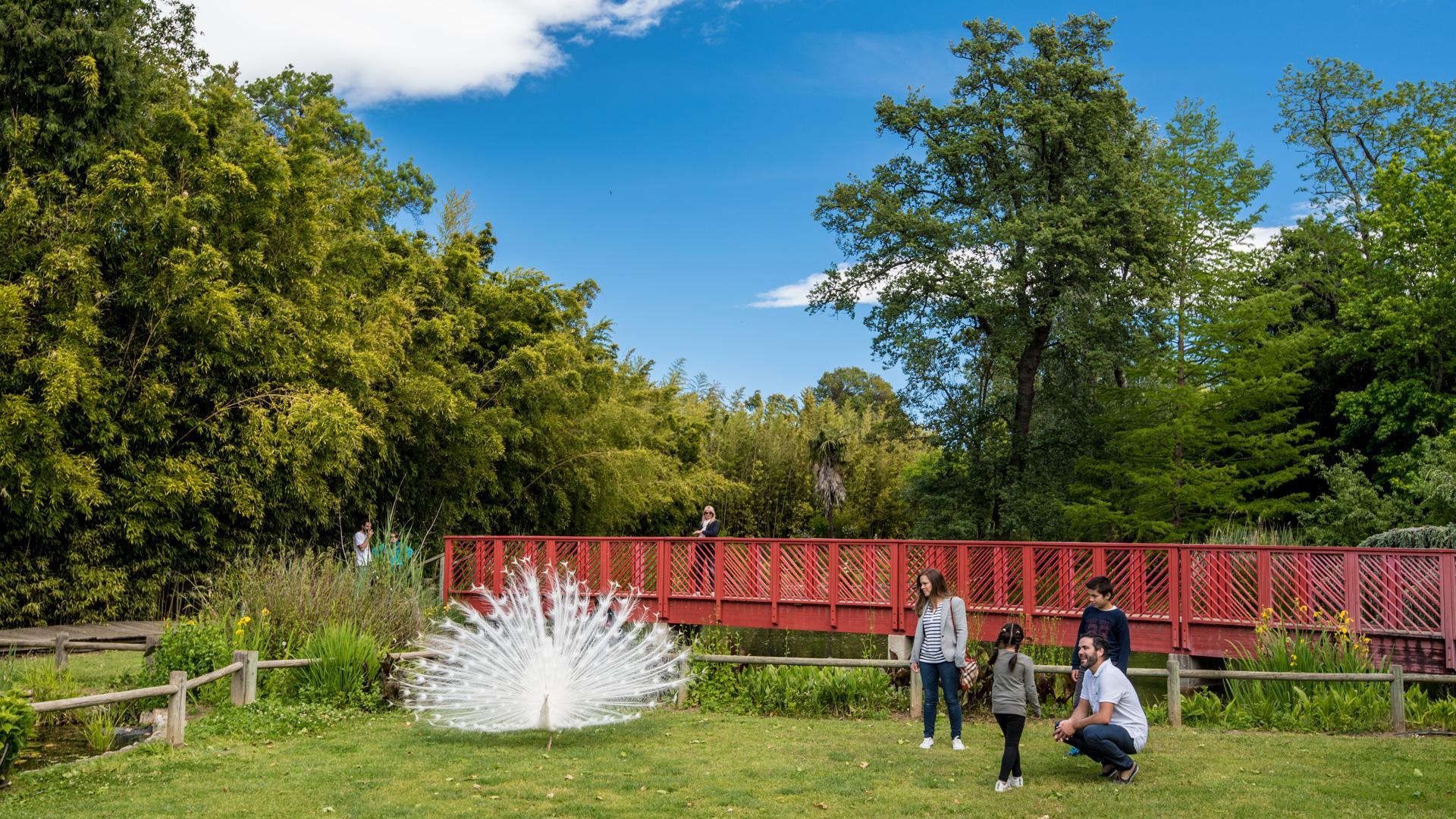 Jardin des plantes de saint cyprien office de tourisme - Jardin des plantes aix les bains ...